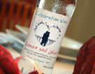 Celebration wine label 22